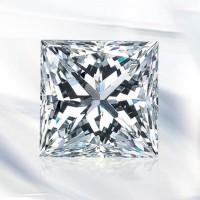 Antropoti-Vip-Club-Concierge-service-Diamond-Shapes-Princess